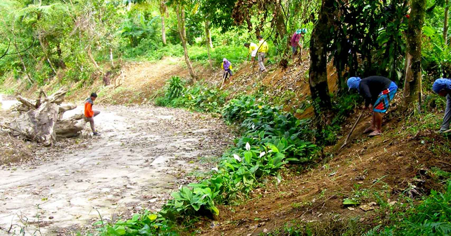 dbcci erosion control project in mt patag silay city