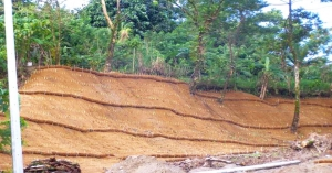 Patag Erosion Control Can Save Many Lives